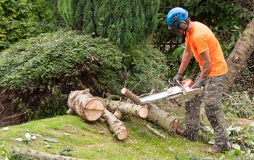 additional services offered by Wolverhampton tree surgeons
