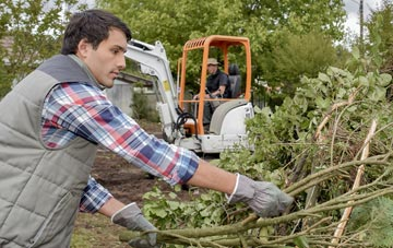 typical services by Wolverhampton tree surgeons